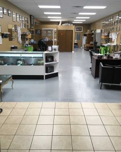 Phoebus Tattoos and Body Piercings St Pete FL