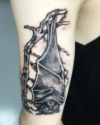 Bat Hanging