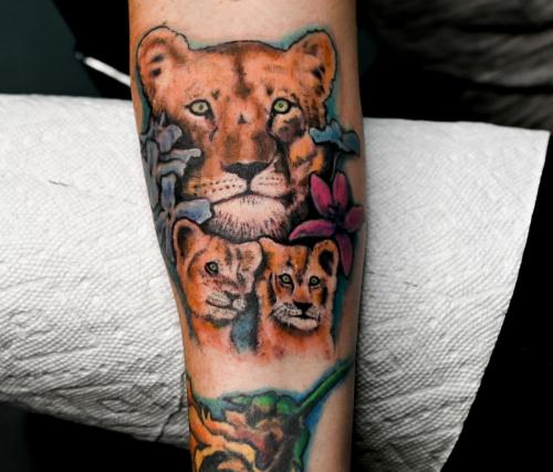 lioness + her two cubs